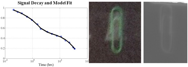 Signal Decay and Model Fit