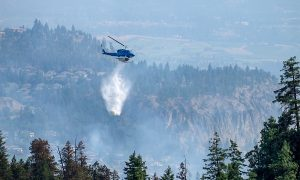 Scientists say current wildfire situation is beyond a 'crisis'